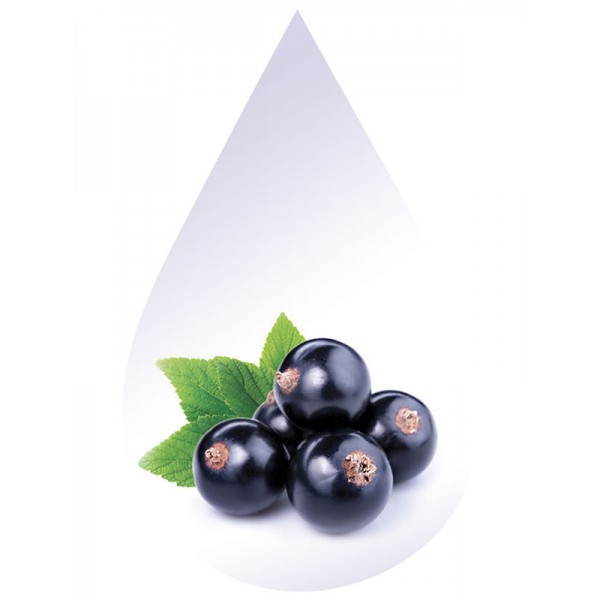 Blackcurrant-CAP